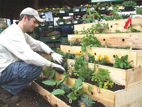 You can squeeze every possible inch of useable space in your apartment. Stacked raised beds can help you a lot.