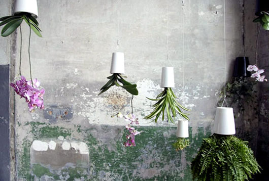 Gardening Ideas with Ceramic Pots