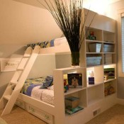 Creative Bunk Beds
