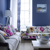 Living Room Color Themes