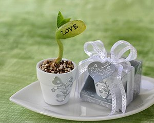 Wonderful hand-painted mini flower pot in a silver display container tied with organza ribbon