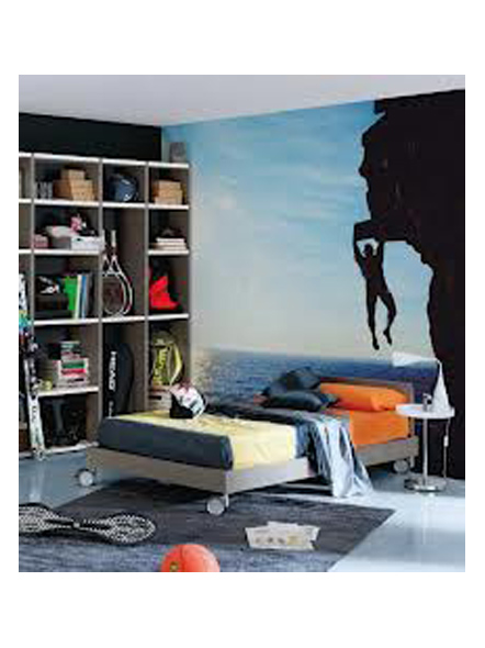 Teen Boys Rooms