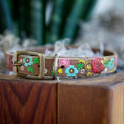 Cute Dog Collars – DIY Projects