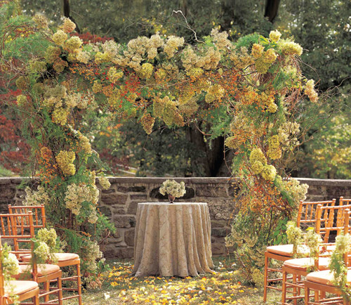 Place you stand and exchange vows should be perfect, a birch and curly willow arch filled with hydrangeas