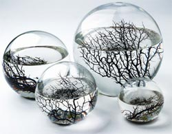 ecosphere a corporate gift ideas