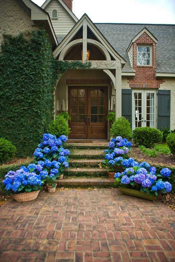 front_door_design_ideas