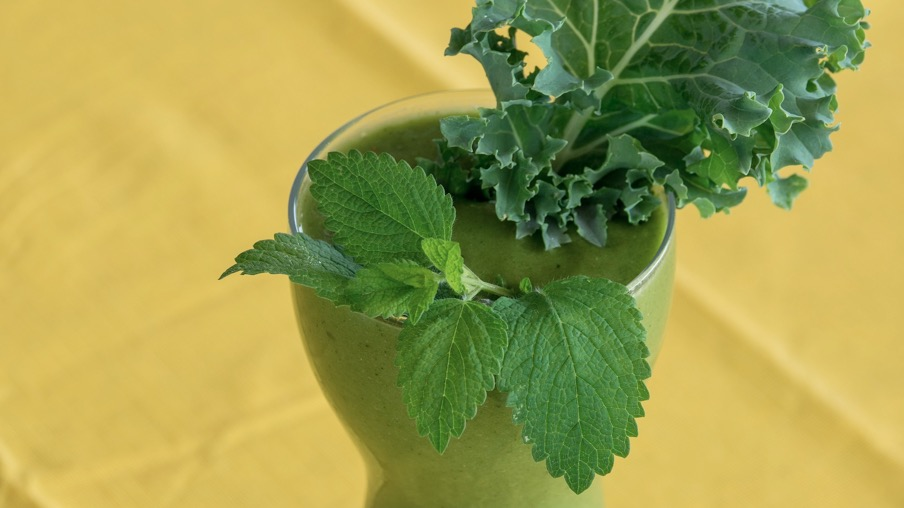 Frugal Herb Diets for Working Moms