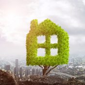 How to Make Your House Eco-Friendly
