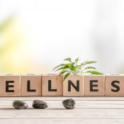 How to Introduce Wellness into Your Home