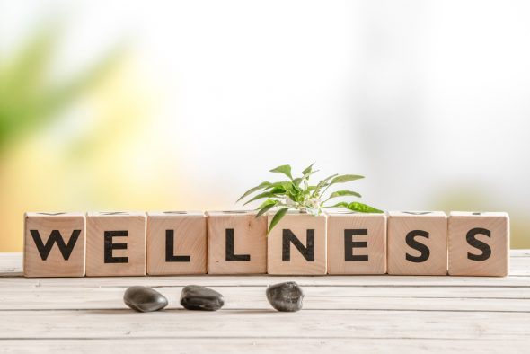Wellness into Your Home