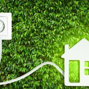 Top Eco-Friendly Home Ideas for Every Homeowner