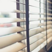 What are the different types of Window Shades?