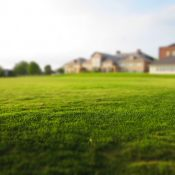 Tips On The Best Ways To Maintain A Lush Lawn While Still Conserving Water