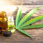 psychoactive cannabis